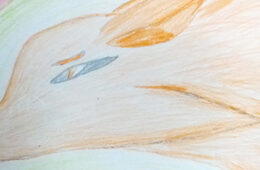 Ира Шмурун и ее рисунки