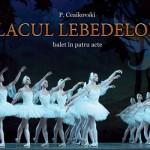 Март-Апрель 2016  в Национальной опере имени Марии Биешу